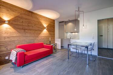 Luxuriously furnished 1-room studio in Munich Maxvorstadt