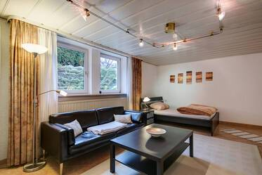 Furnished 1-room souterrain apartment