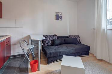 Nicely furnished 1- studio  München Giesing