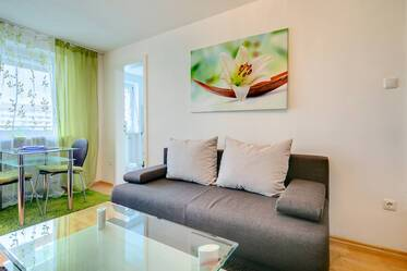 5 minutes to U-Bahn U2,U7: Furnished 1-room apartment with washing machine and optional parking
